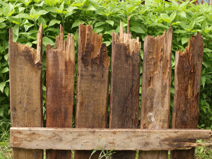 Delicieux Old Wooden Fence