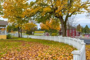 autumn-fence-maintenance