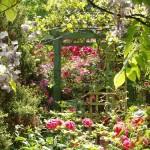 cedar garden secret