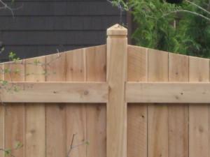 white cedar fence