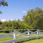 fence on property line