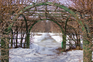 pergola-in-winter