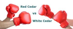 red cedar vs white cedar