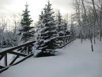 Horse Fence Contractor In The Milwaukee Wi Area Since 1977