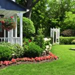 basic landscaping tips