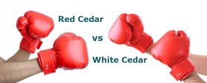 red cedar vs white cedar