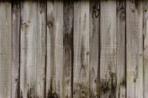 why-cedar-turns-grey
